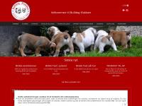 bulldogklubben.dk
