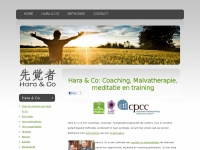 ODC Coach, Malvatherapie, Mindfulness, stress, burn-out, nek- en schouderpijn