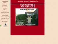 acupunctuurzoeterwoude.nl