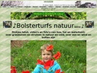 bolsterturf.nl