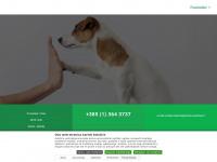 Arnika-veterina.hr - Arnika Veterina – Sve za vaseg kucnog ljubimca