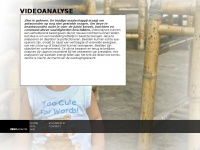 videoanalyse.nl