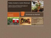 Kwekerij-lisette.nl - Welkom | Hobbykwekerij Lisette Molenaar