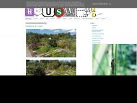 heuswel.blogspot.com