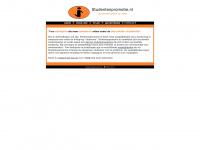 studentenpromotie.nl