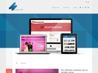 Section 65 - Professional Web Design and Development
