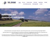 dejongefinancieelconsult.nl