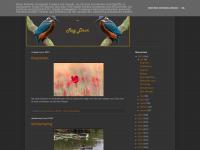 roy-fotos.blogspot.com