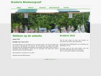 Braderiebleskensgraaf.nl