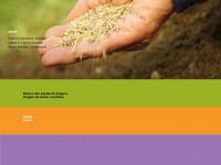 brambv.nl
