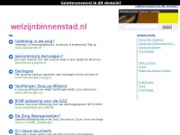 welzijnbinnenstad.nl