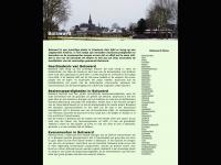 bolsward.info
