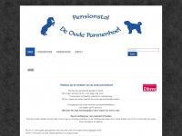 pensionstaldeoudepannenhoef.nl