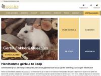 Queenies.nl - Gerbilfokkerij Queenies, De Gerbilfokkerij van Regio Rotterdam